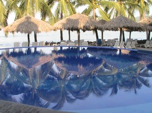 Tree Reflection in Pool, Mexico